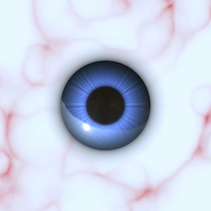 Free photo Sight Anatomy Pupil Iris Eyeball Eye Vision - Max Pixel