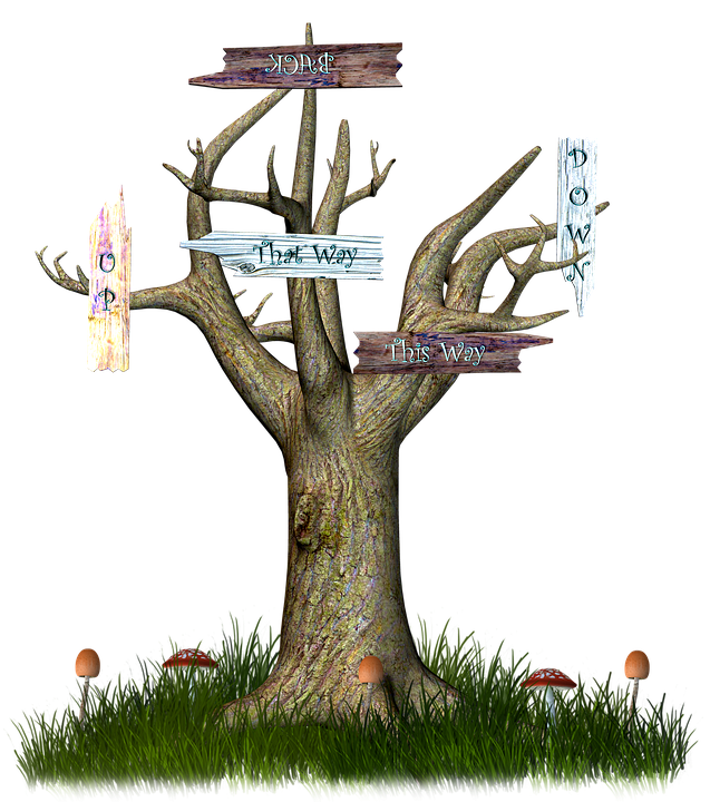Wonderland, Magic Tree, Sign, Forest, Tree, Fantasy