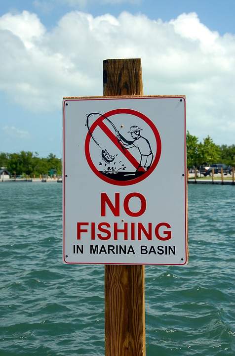 No Fishing Sign, Sign, Warning, Fishing, Water, Symbol