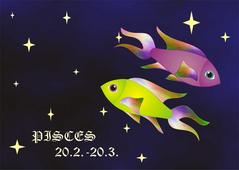 Horoscope, Sign, Zodiac, Sign Of The Zodiac, Fish