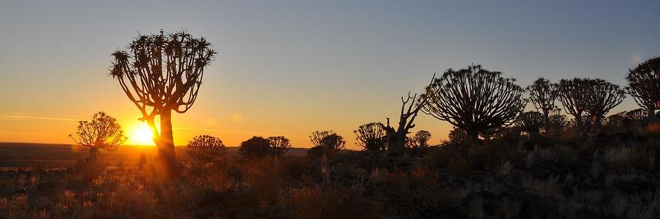 Sunset, Dawn, Nature, Sky, Sun, Silhouette, Dusk