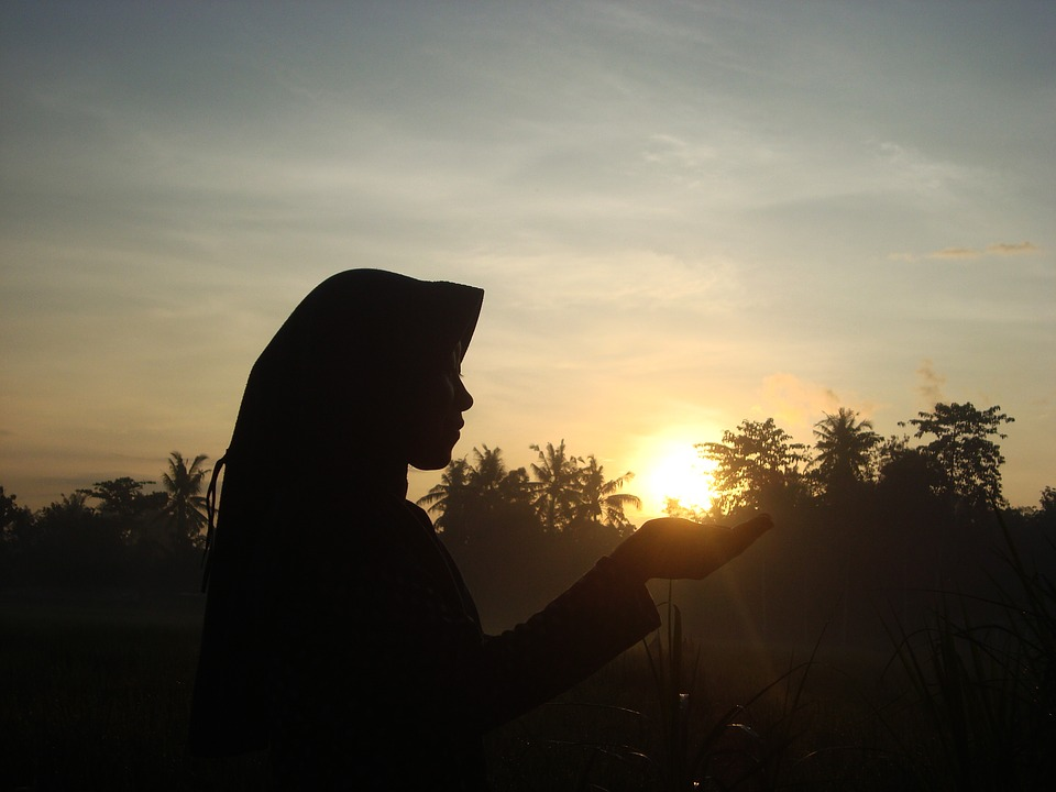 Silhouette, Sunrise, Human, Woman, Nature