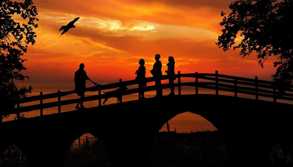 Sunset, People, Bird, Watching, Bridge, Silhouette