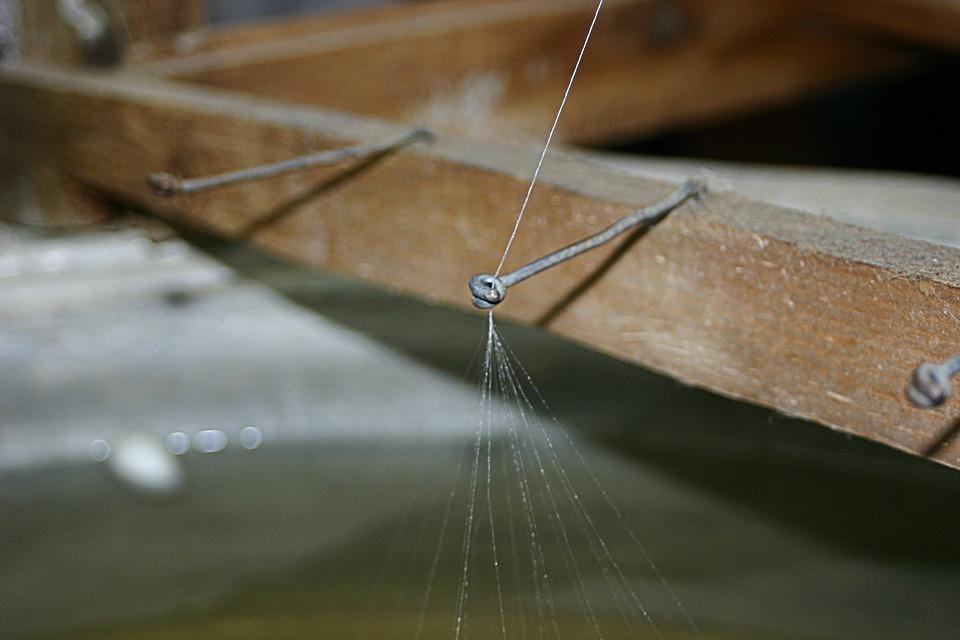 Silk Thread, Silkworm, Thread Spider, Turkey, Nature