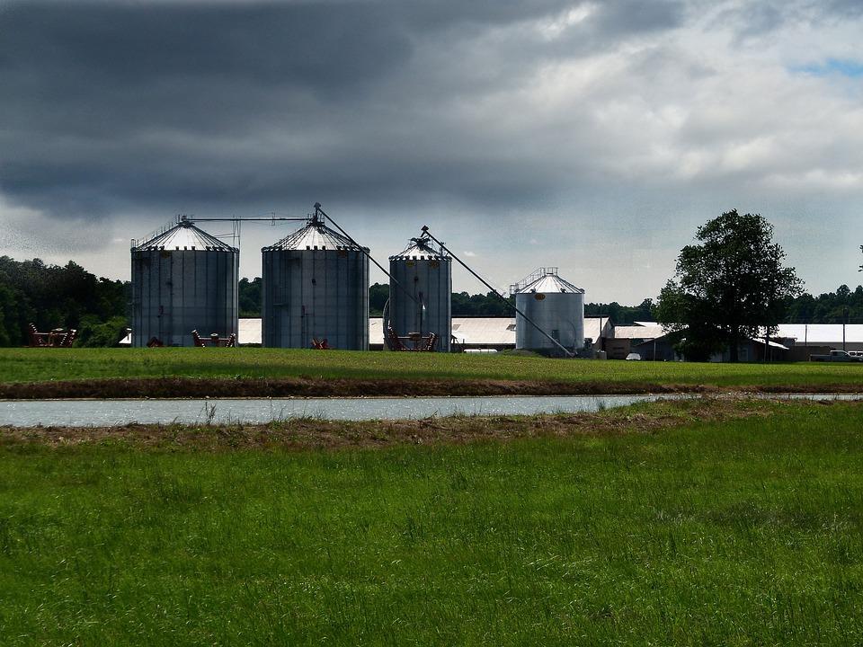 Farm, Silo, Agriculture, Rural, Trees, Scenic