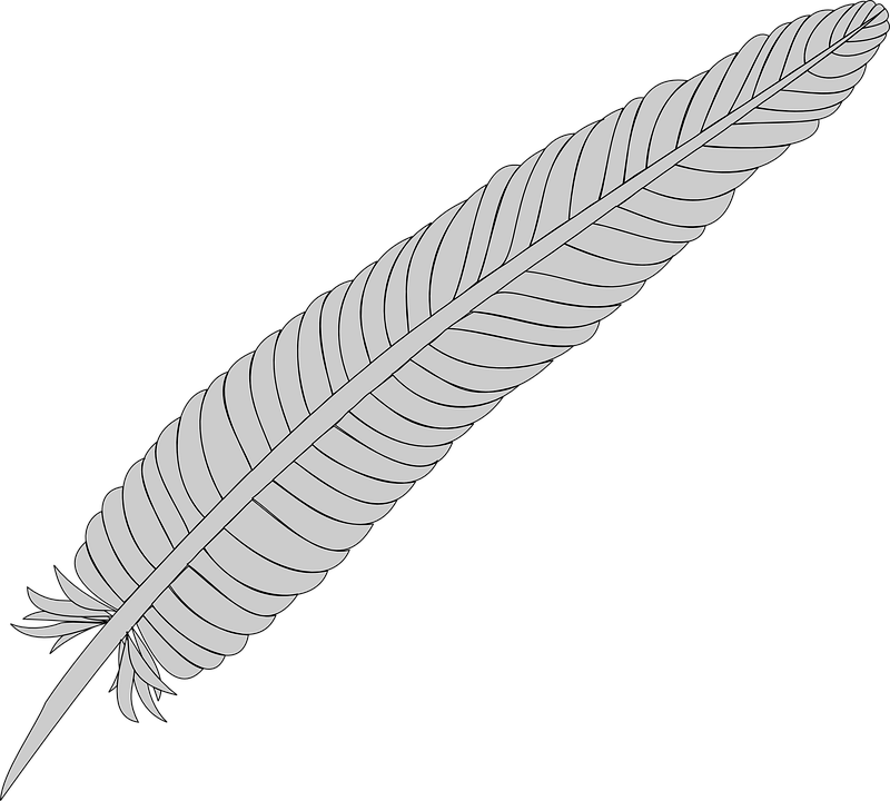 Feather, Silver, Quill, Gray