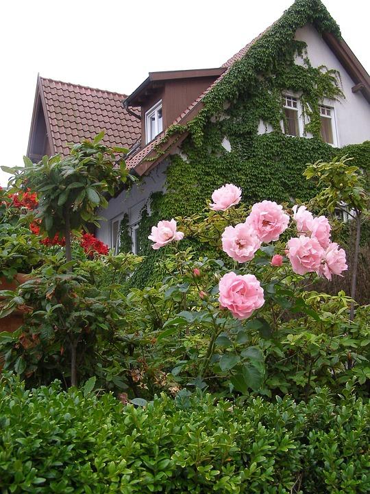 Single Family Home, Home, Garden, Flowers In A Garden