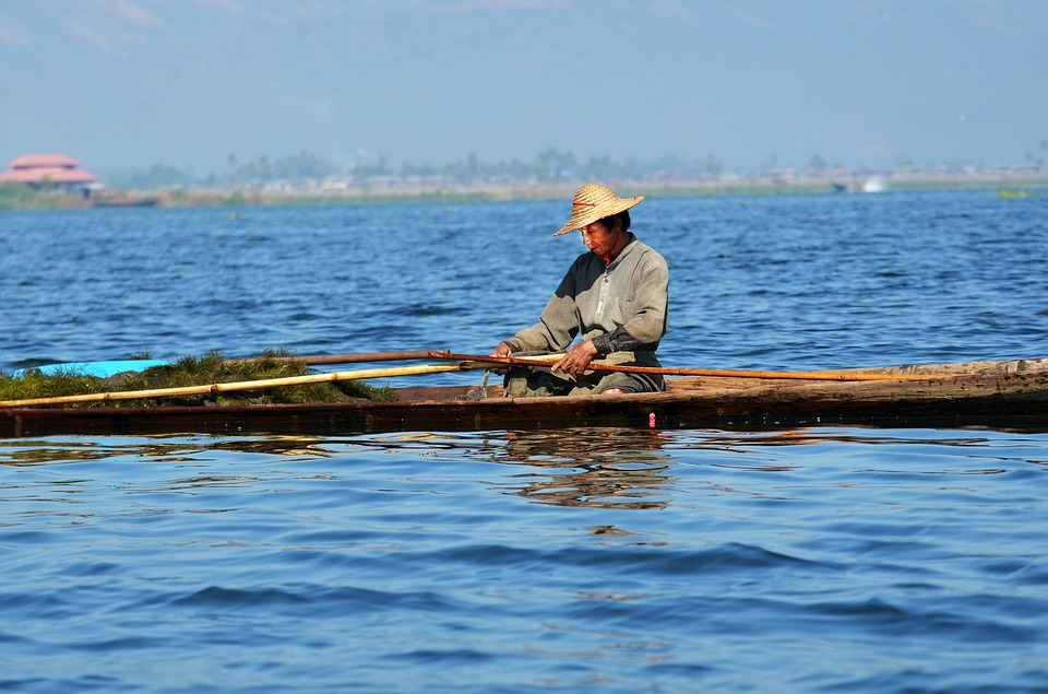 Fisherman, Single-leg-rowers, Inle Lake, Lake Inle