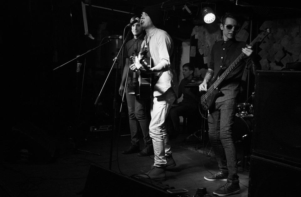 Group, Concert, Music, Sings, Microphone, Guitar, Light