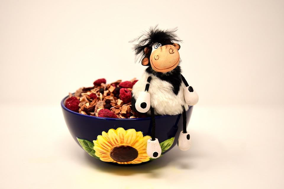 Muesli, Bowl, Cow, Figure, Sitting, Healthy, Food, Eat