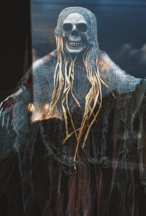 Free photo Skeleton Fantasy Halloween The Witch Undead - Max Pixel