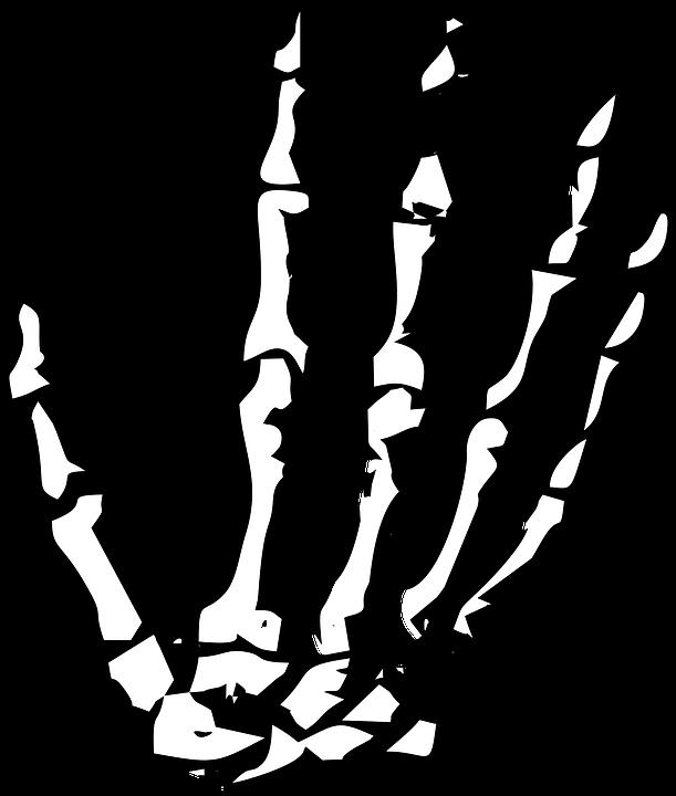 Hand, Skeleton, Skeleton Hand, Halloween, Human, Bone