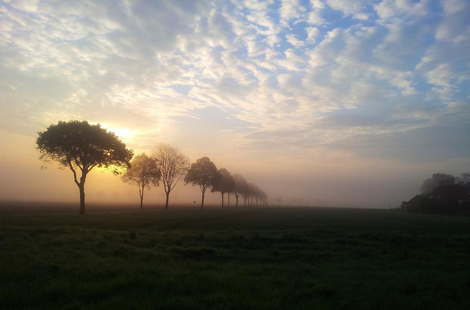 Dawn, Sunrise, Landscape, Morgenstimmung, Skies, Sky