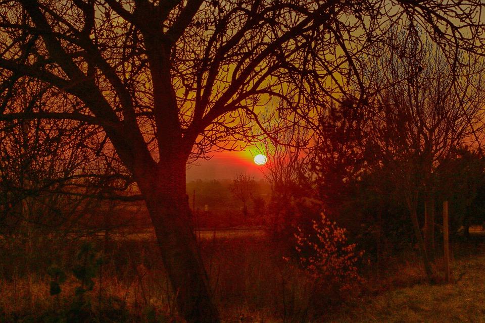 Sunrise, Landscape, Impression, Skies