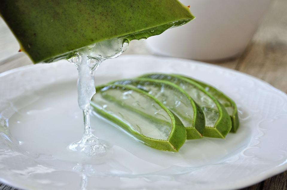 Aloe, Aloe Vera, Leaf, Gel, Plant, Drink, Skin Care