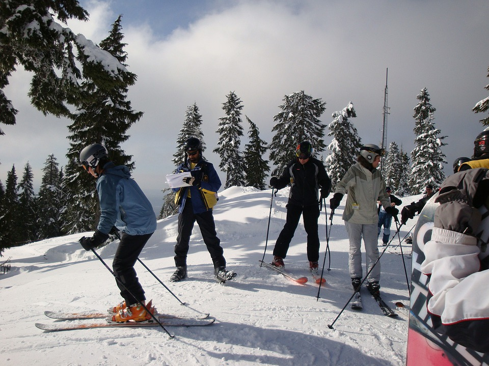Skiers, Skiing, Winter, Sports, Skis, Snow, Fun