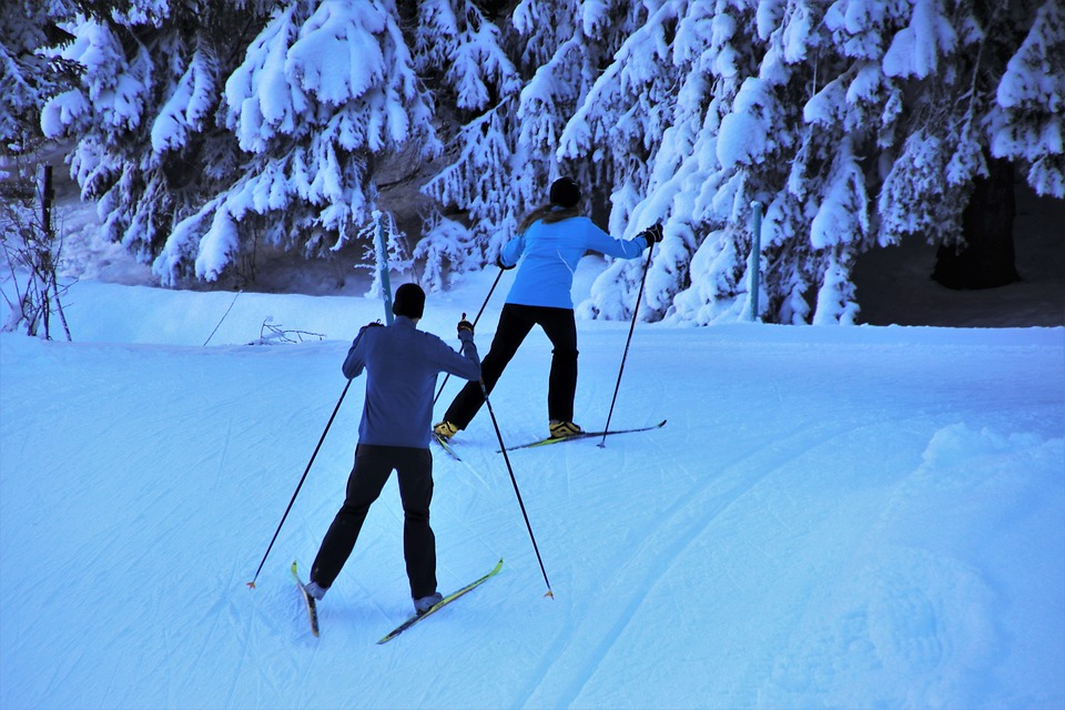 Skiers, Skis, Snow, Winter, Snowy, Relaxation, Two