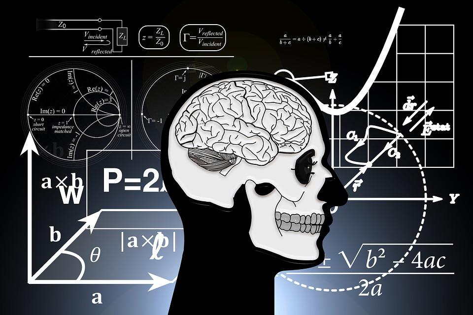 Skull And Crossbones, Skull, Brain, Coils, Death