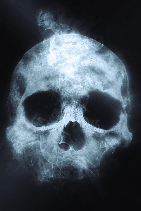 Free photo Skull Spooky Head Skeleton Scary Death Halloween - Max Pixel