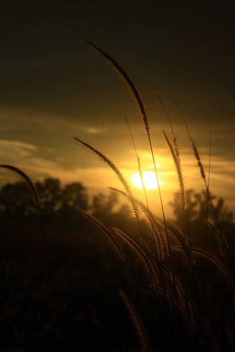 Sunset, Sky, Afternoon, Summer, Sun, Nature, Orange