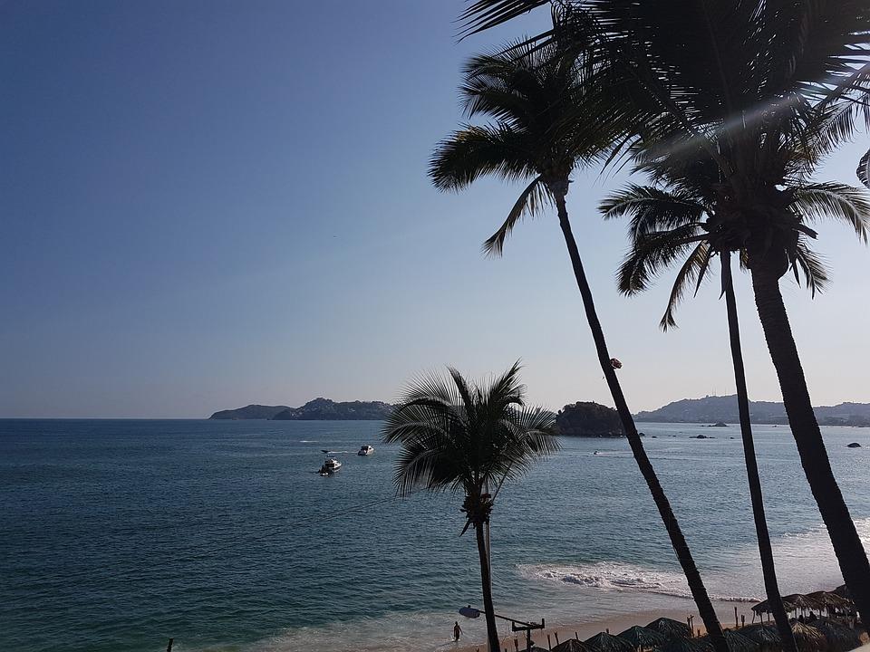 Palms, Blue, Sea, Relax, Beach, Sky, Landscape, Holiday