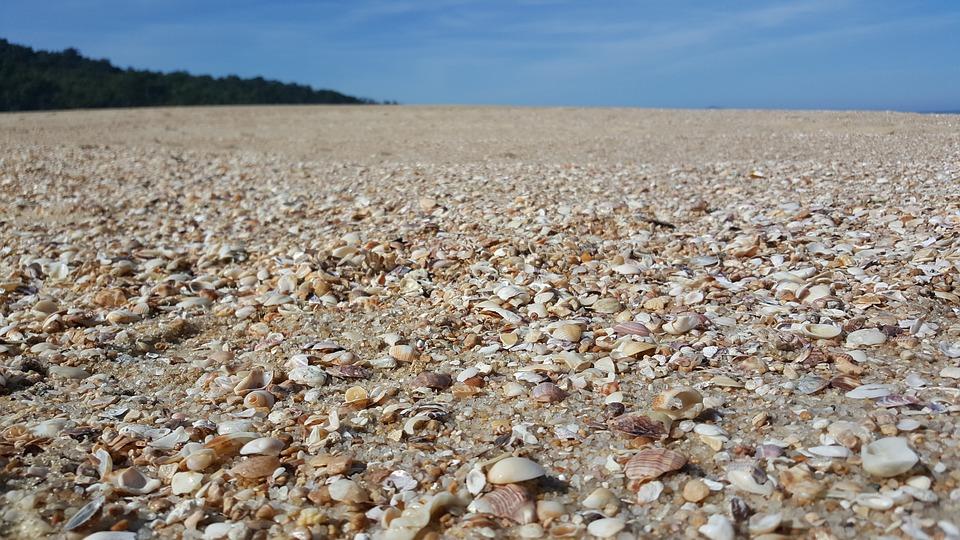 Beach, Shells, Sky, Blue, Mar, Hill, Brazil, Beira Mar