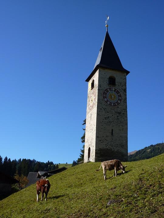 Steeple, Church, Sky, Parpan, Switzerland, Cow, Cows