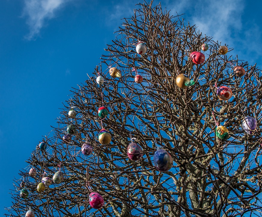 Easter, Eggs, Tree, Blue, Sky, Brown, Outdoor