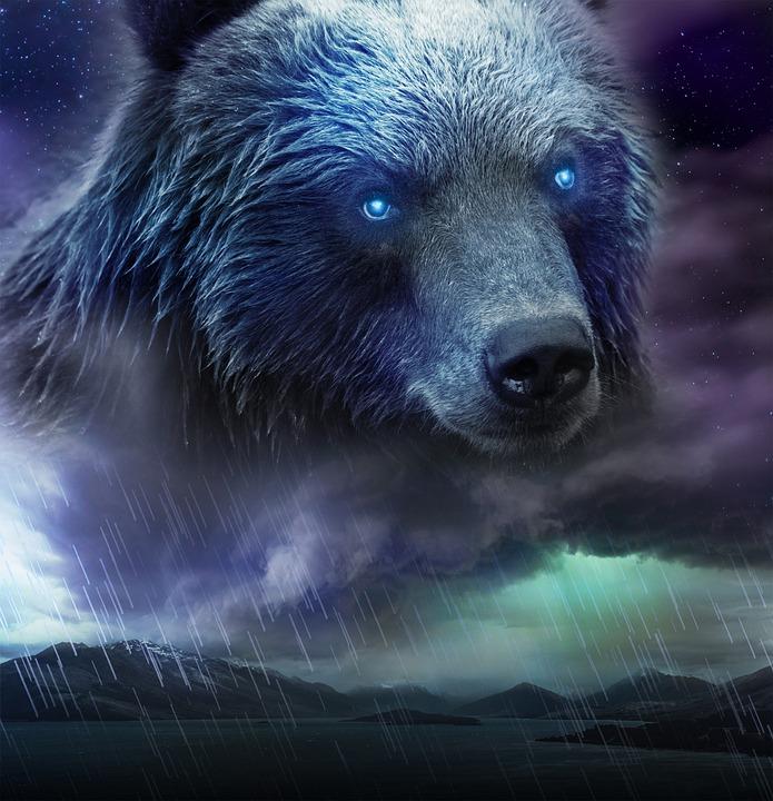 Fantasy, Nature, Environment, Bear, Sky, Canada, Dream