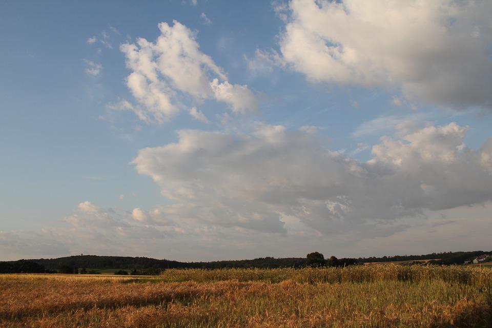 Sky, Clouds, Fields, Horizon