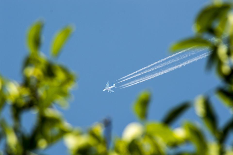 Flying, Sky, Blue, Green, Holidays, Zoom, Full, Flight