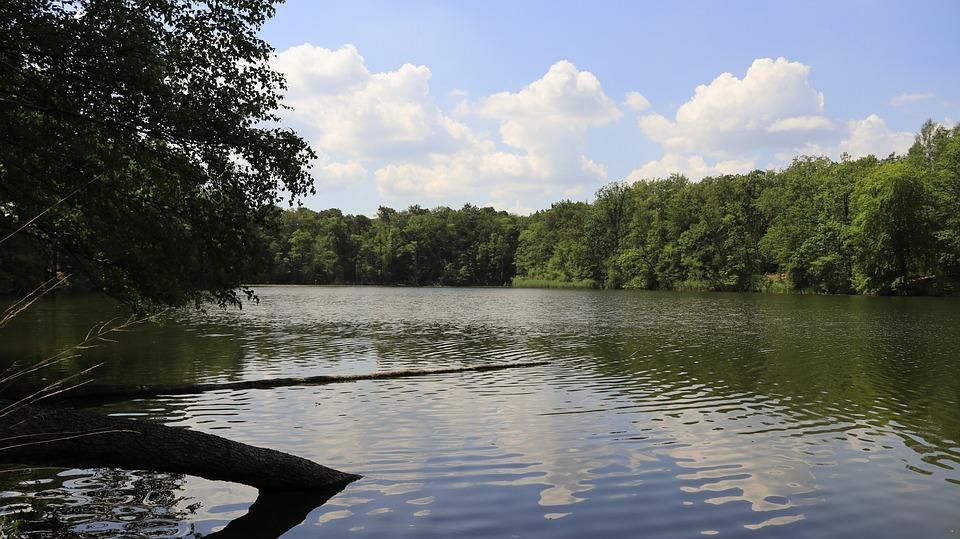 Lake, Schampsee, Brandenburg, Landscape, Sky, Water