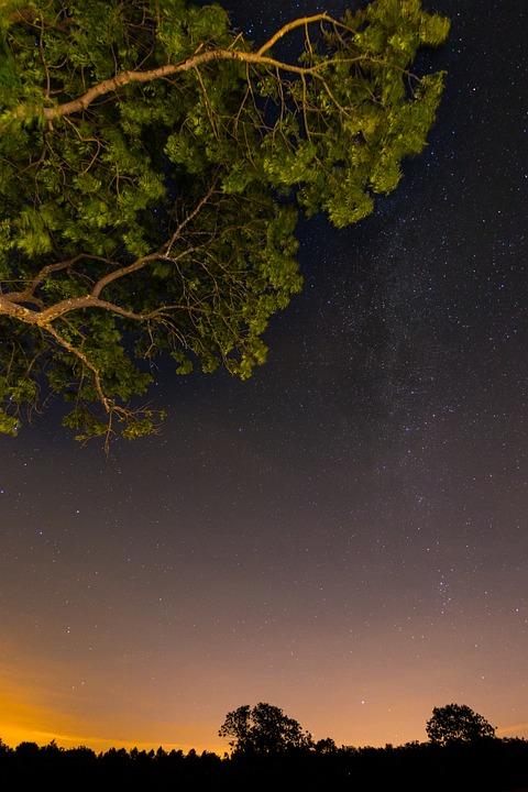 Star, Night, Starry Sky, Sky, Dark, Landscape, Summer