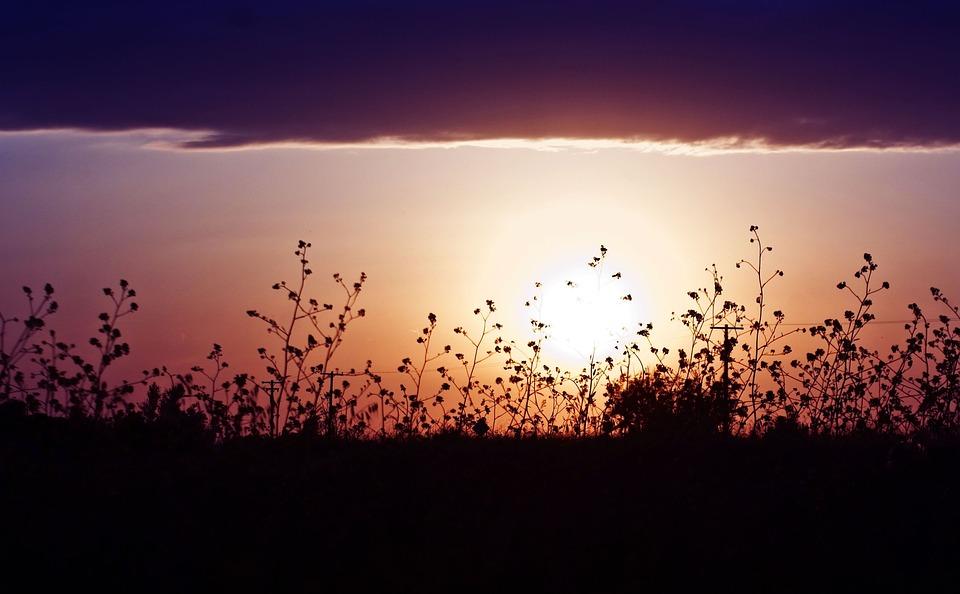 Sunset, Nature, Dawn, Dusk, Sun, Sky, Landscape