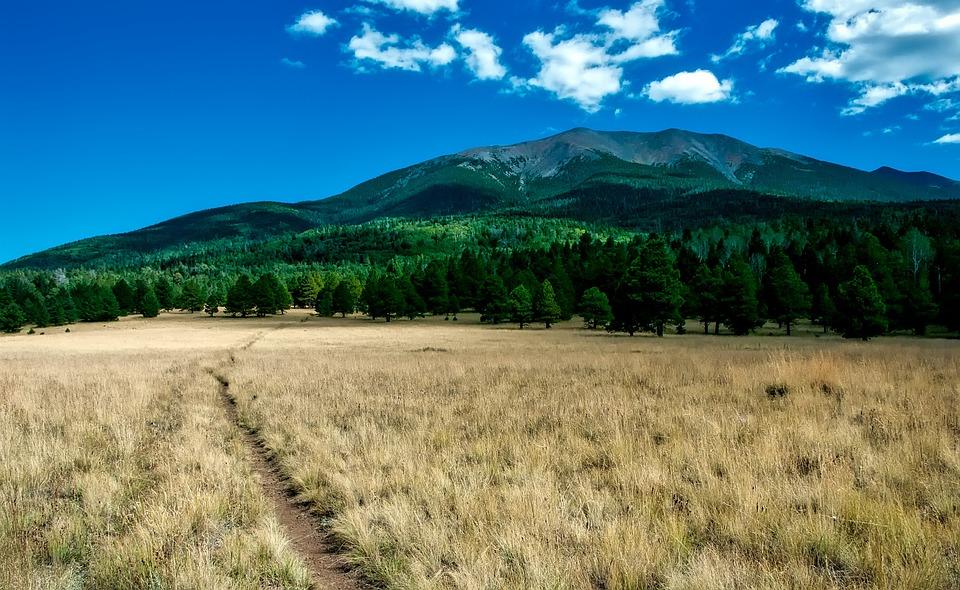 Arizona, Mountains, Meadow, Trail, Path, Sky, Clouds