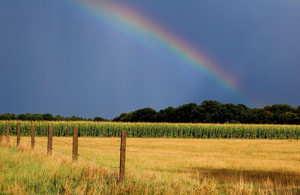 Rainbow, Autumn, Natural Spectacle, Sky