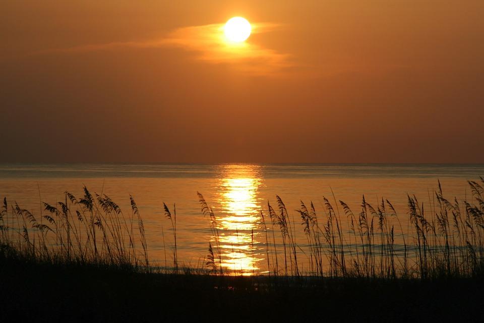 Sea, Ocean, Water, Plants, Nature, Sunset, Sky, Clouds