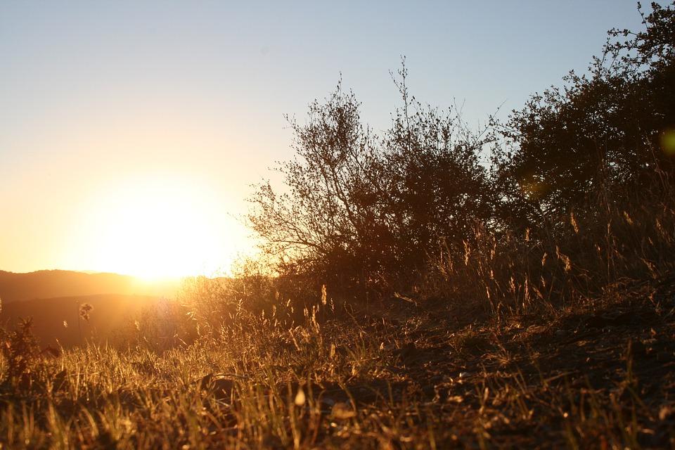Sunset, Sky, Golden Sunset, Sun, Prairie, Nature, Rays