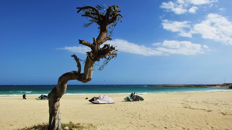 Beach, Sand, Tree, Sky, Cyprus
