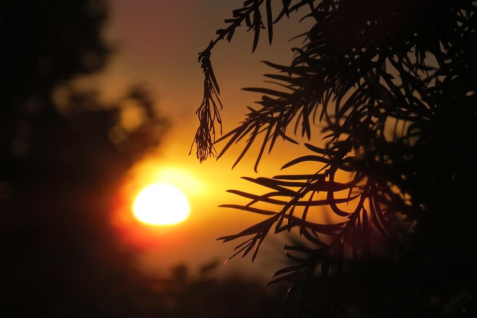 Sunset, Sun, Abendstimmung, Setting Sun, Sky, Romantic