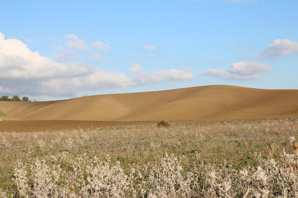 Wheat, Landscape, Sicily, Italy, Summer, Sky, Nature