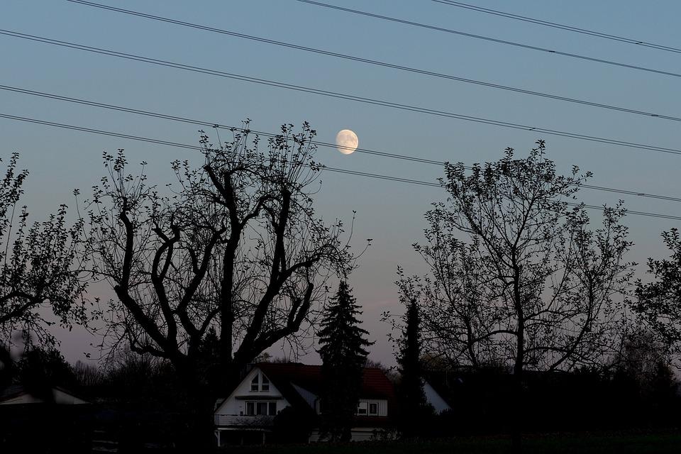 Moon, Power Line, Tree, Landscape, Dark, Sky, Mood