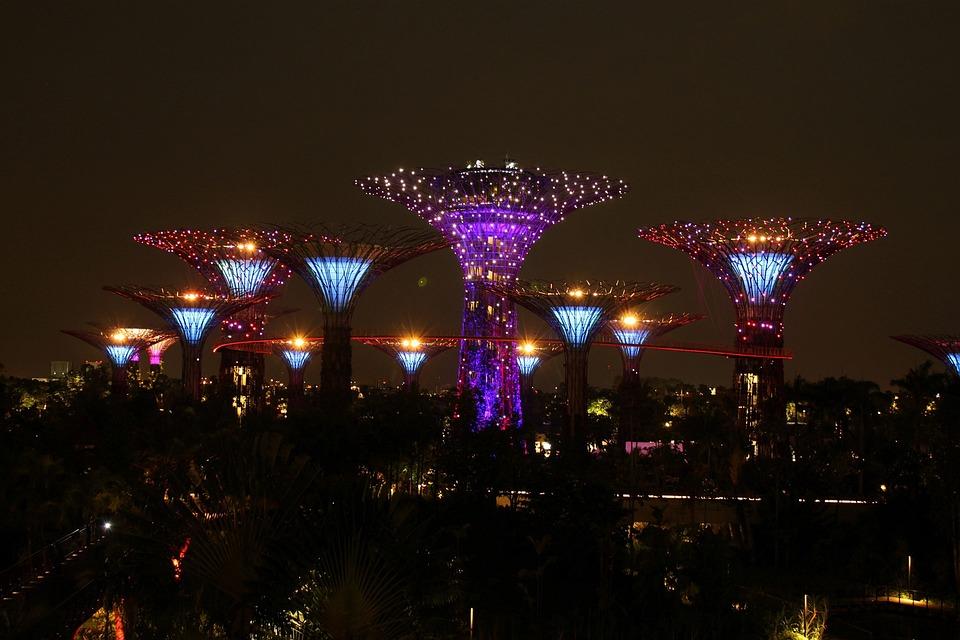 Singapore, Tree, Sky, Night, Landmark, Park, Asia