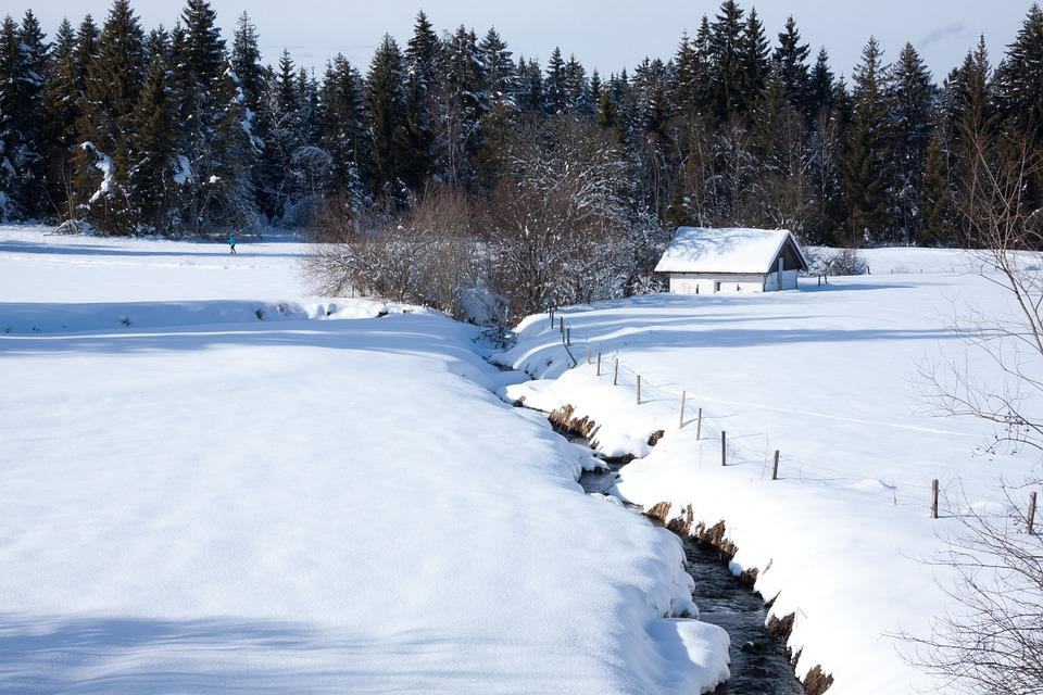 Bach, Hut, Firs, Trees, Sky, Snow, White, Sunny, Wintry