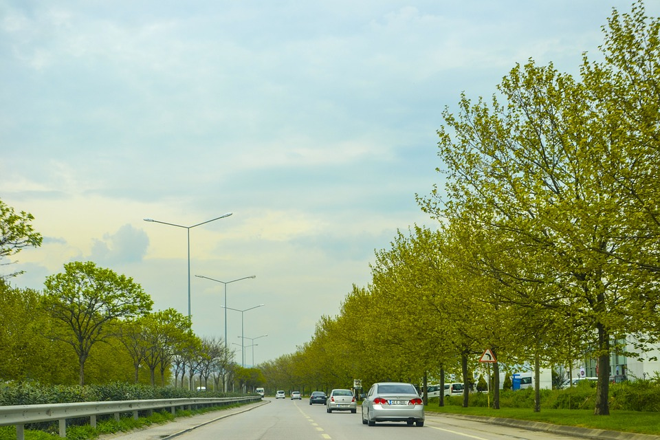 Road, Long Way, Tree, Trees, Vehicle, Traffic, Sky