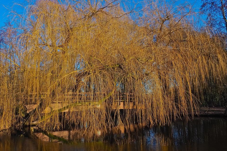 Landscape, Channel, Nature, Water, Rest, Sky, Blue