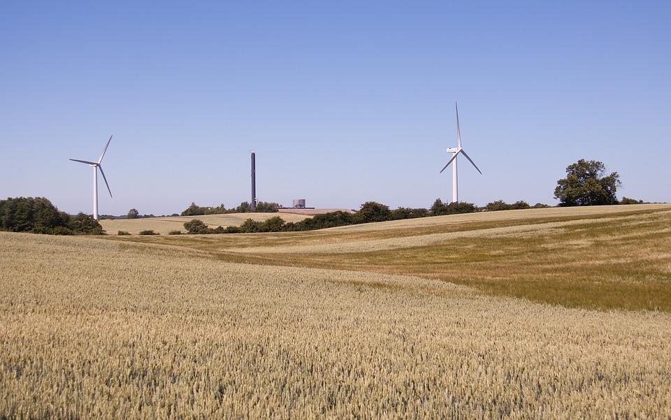 Corn Field, Wind Turbines, Landscape, Sky, Summer, Mill