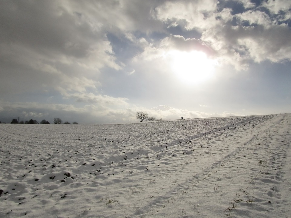 Winter's Day, Snow, Snow Cover, Sky, Winter Sun, Wintry