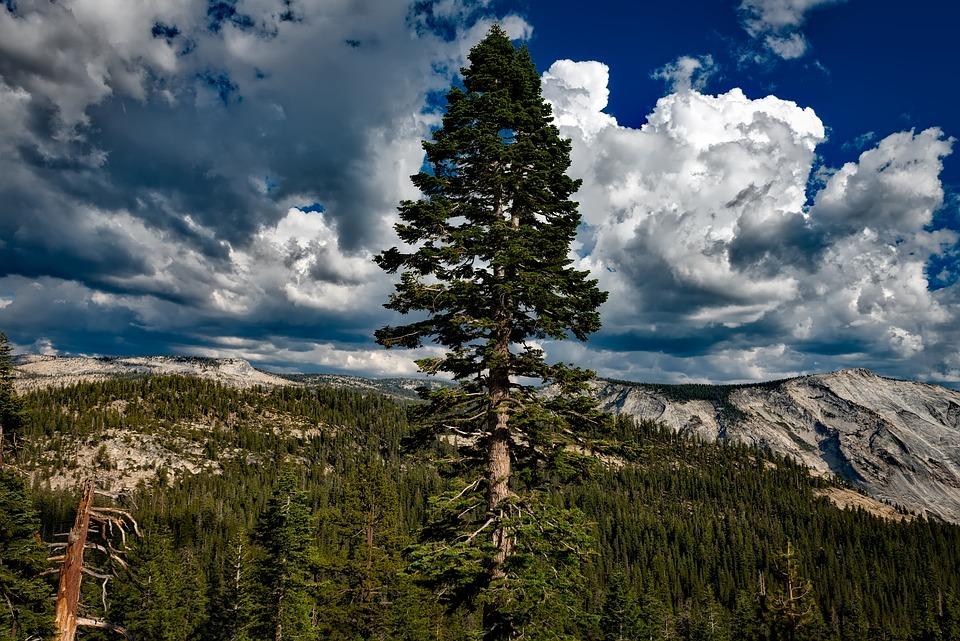 Yosemite, National Park, California, Sky, Clouds
