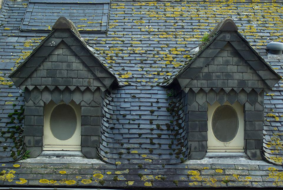 Roofing, Slate, Windows
